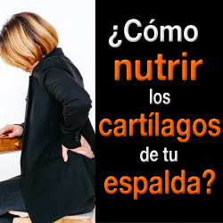 ¿Cómo nutrir los cartílagos de tu espalda?