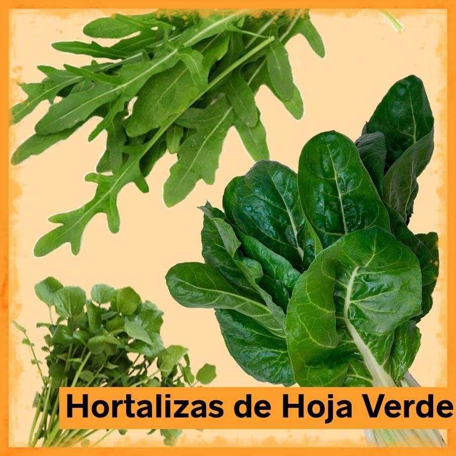 Hortalizas de hoja verde